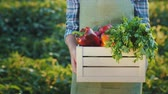 lente : A farmer holds a box of juicy fresh vegetables from his field