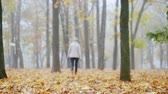 depressão : Fallen leaves in the park, in the distance a blurred silhouette of a woman