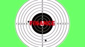 atirador : Shooting target with word finance made in 2d software