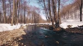 bashkortostan : Beautiful river in the spring forest, Bashkortostan Russia Stock Footage