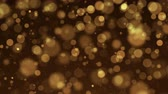 starfield : Gold Particles. Natural Floating Organic Particles On beatiful Background. Glittering Particles With Bokeh. Slow motion.