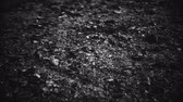 Abstract closeup of earth surface background. dust, cracks and stones