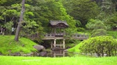 zoom in on arch wooden bridge in japanese garden Stock mozgókép