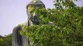 great buddha in kamakura appearing behind tree branches
