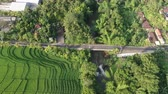 vadi : Flight of a drone over a cottage village near rice fields on the ocean in Bali, Indonesia.