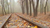 sleepers : fog, autumn, people walking in the distance in the park, camera movement across the rail from left to right, low angle, full HD, no sound. Stock Footage