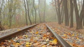 sleepers : fog, autumn, camera movement across the rail from right to left, bottom view, full HD, no sound.
