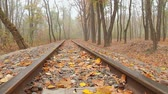 sleepers : fog, autumn, camera movement across the rail from bottom to top, right to the left, low angle, full HD, no sound.