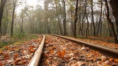 kolej : autumn, camera movement across the rail from left to right, low angle, full HD, no sound.