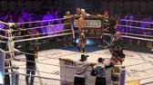 extremo : Orenburg, Russia - June 15, 2018 year: The fighters compete in mixed martial arts (M-1 Challenge 94) at the tournament The battle in the heart of the continent Stock Footage