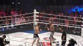 elaborate : Orenburg, Russia - June 15, 2018 year: The fighters compete in mixed martial arts (M-1 Challenge 94) at the tournament The battle in the heart of the continent Stock Footage