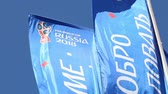 bem vindo : Welcome flags on Moscow streets in honor of the 2018 FIFA World Cup in Russia Stock Footage
