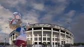 stadyum : Official mascot of the 2018 FIFA World Cup in Russia - wolf Zabivaka and Luzhniki Olympic Complex - Stadium for the 2018 FIFA World Cup. Moscow