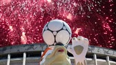 zafer : Fireworks over the Official mascot of the 2018 FIFA World Cup in Russia - wolf Zabivaka and Luzhniki Olympic Complex - Stadium for the 2018 FIFA World Cup. Moscow Stok Video