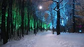 неон : Christmas (New Year holidays) decoration in Moscow (at night), Russia-- Sparrow Hills (Vorobyovy Gory)