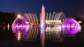 garden center : Colorful Lights of the Dancing Fountain in Gorky Park (at night), Moscow, Russia Stock Footage