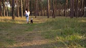 hbitost : Girl playing with her dog in the forest at sunset Dostupné videozáznamy