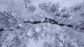 snow covered spruce : Top view of winter mountain river surrounded by trees and banks of snow-covered