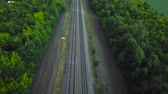 инфраструктура : Empty straight double-way railways surrounded by green forest, aerial top view Стоковые видеозаписи