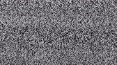 шипение : Television static noise, black, white Стоковые видеозаписи