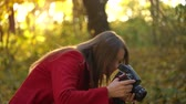 őszi levelek : Beautiful girl with a camera walks through the autumn forest and takes pictures. Weekend outside the city Stock mozgókép