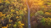 tag : Aerial view on car driving through autumn forest road. Scenic autumn landscape Videos