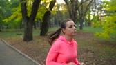 velocidade : Close up of woman running through an autumn park at sunset. Slow motion