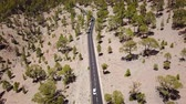 tag : Top view of the road with cars in the Teide National Park. Tenerife, Canary Islands, Spain