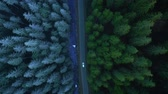 logistika : Aerial view of car riding on the road in the coniferous forest among the mountains
