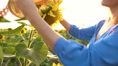 coltivazione : Woman in a blue dress puts on a straw hat on a sunflower in the field at sunset. Agriculture