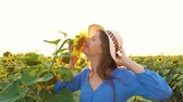 coltivazione : Woman in a blue dress and hat sniffs and examines a sunflower in the field. Agriculture. Harvesting Filmati Stock