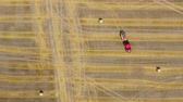 coltivazione : Aerial view of haymaking processed into round bales. Red tractor works in the field Filmati Stock