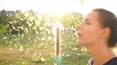 sentido : Portrait of pretty woman blows on reeds outdoors in sunny day. Fluff from reeds flies around Stock Footage