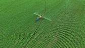 The Protection Of Plants.Tractor Spraying A Green Potato Field. Aerial View