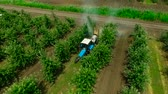 Aerial view of the Sprayer for Applying Fungicides in the Apple Orchard.Crop Protection. Wideo