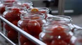 przetwory : Automatic Line for Processing of Vegetables.Workers on the Production of Canned Food.Preserving Tomatoes. Glass jars with Tomatoes on a Conveyor belt.CloseUp