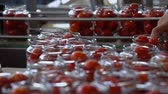 autoclave : Automatic Line for Processing of Vegetables.Workers on the Production of Canned Food.Preserving Tomatoes. Glass jars with Tomatoes on a Conveyor belt Stock Footage