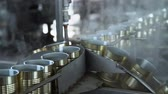 conserva : Plant for the Production of Canned Vegetables. Tin on the Production Line. Steaming Stock Footage