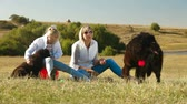 playful : Mother and Daughter Feeding their Newfoundland Dogs