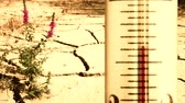 Arid cracked ground and overheated thermometer, concept of global warming