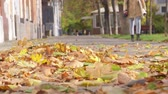 asphalt : Falling autumn leaves blowing in the wind on sidewalk Stock Footage
