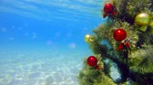 installation : Under water decorated Christmas tree sparkling in turquoise sea