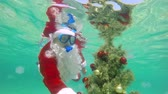 mergulhador : Christmas celebration underwater scuba Santa installs Christmas tree on seabed