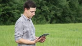 The caucasian male brunette farmer on the field works with a tablet. Scientist working in the field with agricultural technology. Stock Footage