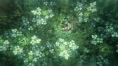 intuition : Dreamy Fractal Flowers With Leaves Slowly Turning and Blossoming - Green and Turquoise Stock Footage