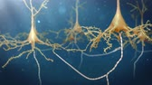 biotechnologie : neuron system animation