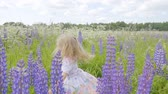 lupine : Cute Little Girl Having Fun and Spinning In the field among the flowers of lupine. Freedom concept. Sunset. Slow Motion. Stock Footage