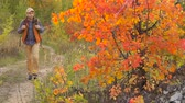 hipster : Man with hiking equipment walking in autumn forest. Stock Footage