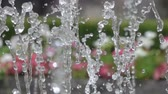 шланг : Closeup of light splashing water in a sunny fountain in a park in summer. Water fountain in garden. Slow motion. Стоковые видеозаписи