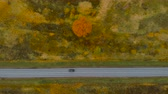 путь : View From Above. Aerial View Flying Above Fall Nature Road Running Through Countryside. Road in Autumn Scenery Aerial Shot. Black Car Driving on Road Leading Through Colorful Landscape on Autumn Day